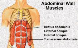 ab exercises     pack abs