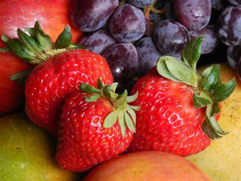 images apple table plant grape fruit berry