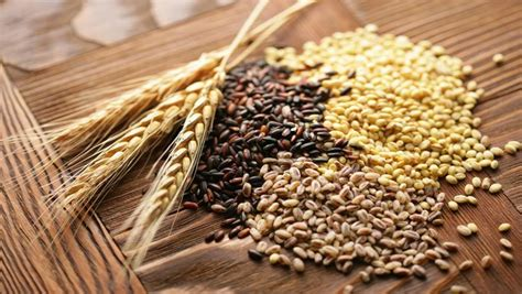 whole grains for vegetarians list of healthy foods for vegetarian you should