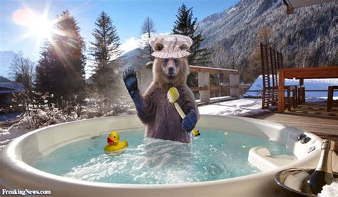 dirty bear taking a bath in a hot tub pictures freaking news