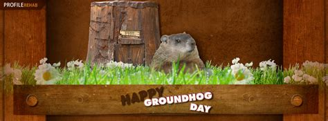 groundhog day timeline free covers for timeline cool timeline covers