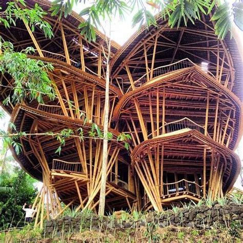 Kursi Bambu Bali elora hardy rancang rumah bambu unik inovatif di bali