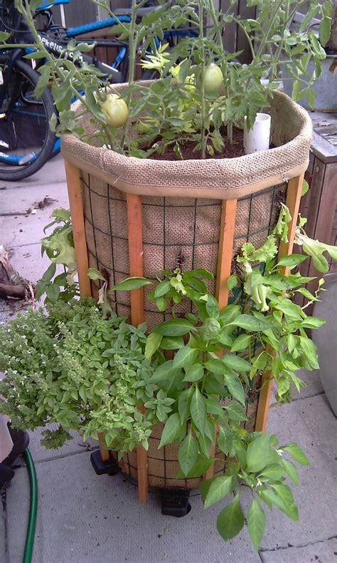 Vertical Vegetable Garden Planters 17 Best Images About Vertical Vegetable Garden On