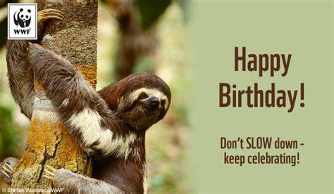 Sloth Birthday Cards Wwf Birthday Cards Gangcraft Net