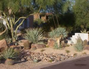 Desert landscaping pictures and ideas