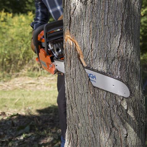 how to cut a tree how to cut a tree inline cut telegram