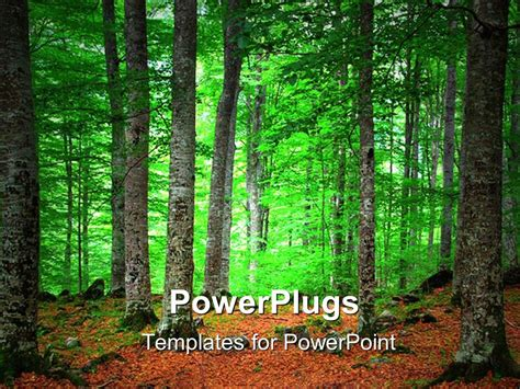 powerpoint template landscape of green forest with autumn