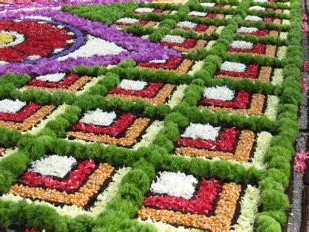 liguria fiori traspi net 187 infiorate artistiche in linguria con fiori