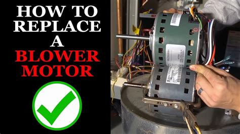 bryant inducer motor wire diagram wiring images