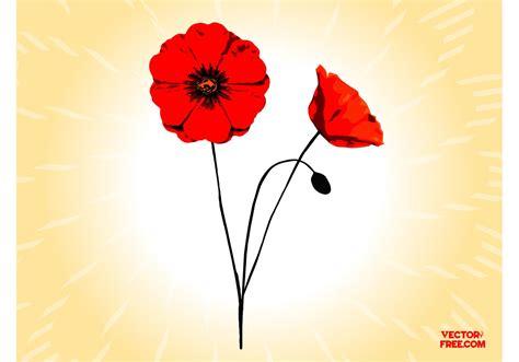 clipart vectors poppy flowers free vector stock graphics