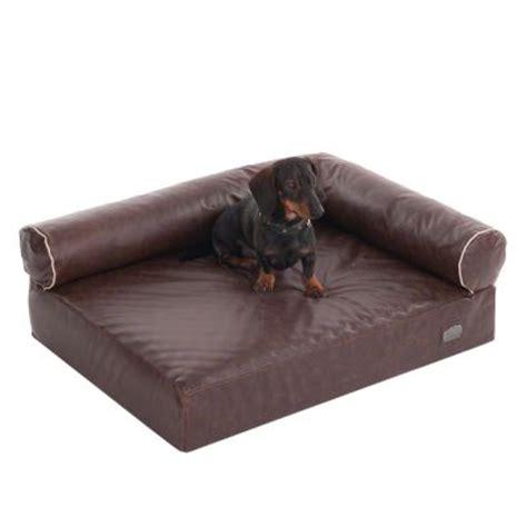 divani cani divano per cani wellness divan antik zooplus