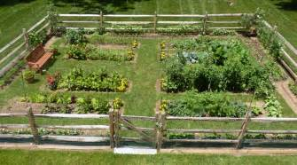 Raised Vege Garden - bed construction by vegetable gardens 4 u garden layout design and mentorship in chester