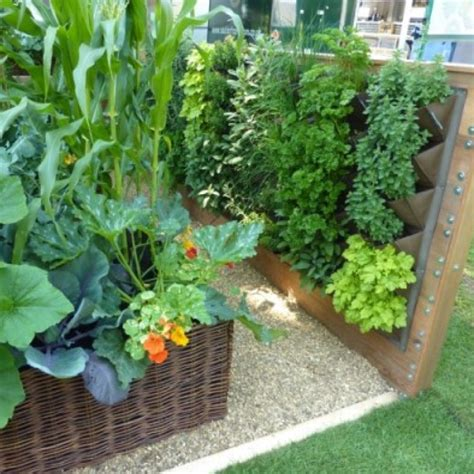 wall vegetable garden growing in small spaces