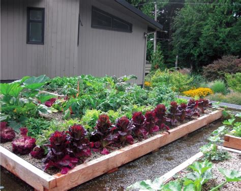 rooftop vegetable gardens grow up build an edible rooftop garden garden therapy