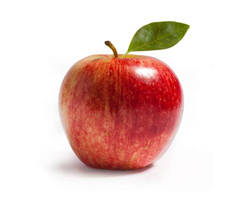 apple red pri stem red apple