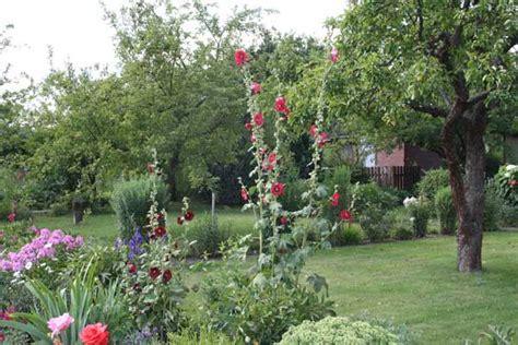 welche pflanzen im garten pflanzen im garten natures garden garten natur