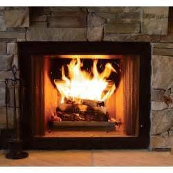Fireplace With Wood Burner by Product Earth S Stainless Steel Wood Burning