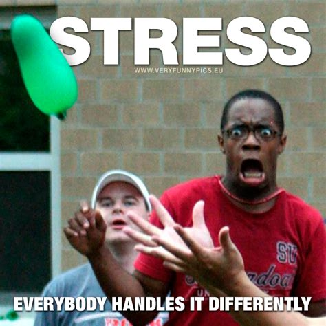 Stress Meme - funny stress memes 28 images new collection of