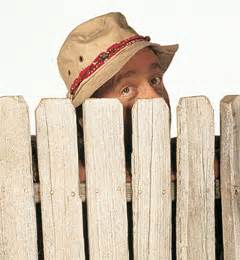 wilson from home improvement
