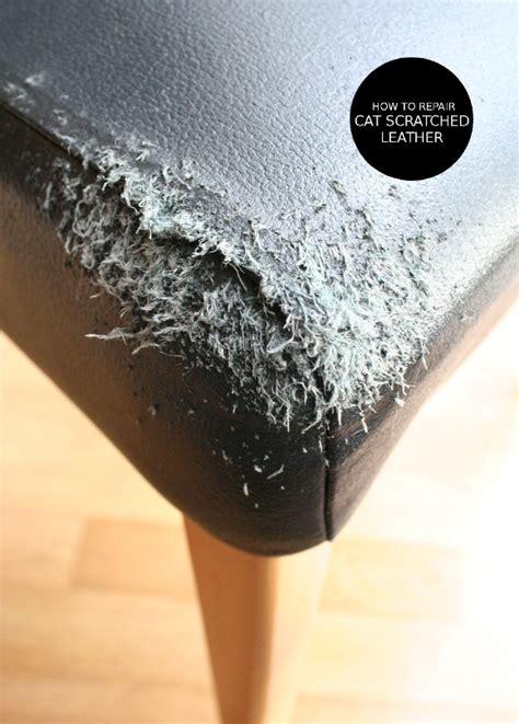 leather sofa scratch cat scratch leather sofa repair teachfamilies org