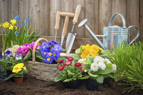piante e giardini benefici ortoterapia non sprecare