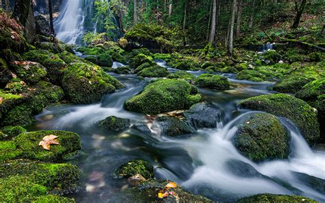wallpaper river water rocks trees mountain river clearer ldna water waterfall rocks with