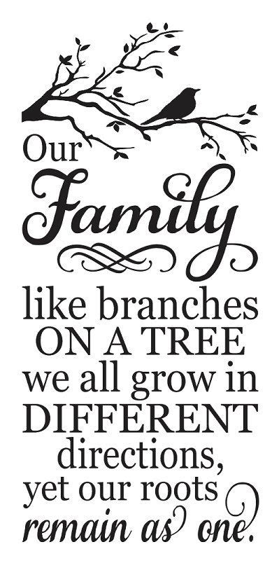 are you a branch on our family tree us history pinterest the world s catalog of ideas