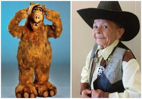Iconic Microsoft Character Passes Away And No One Notices by Who Played And Lovable Character Alf Has