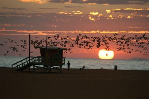 california turisti per caso tramonto a santa los angeles viaggi vacanze e