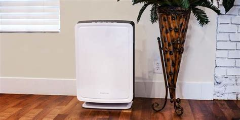 the seven best air purifiers on the market right now
