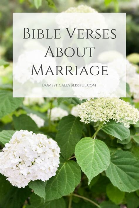 Marriage Bible Verses About by Best 25 Bible Verses About Marriage Ideas On