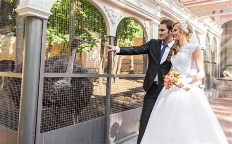 Wedding Ceremony Zoo by Animals How To Rent Animals For Your Ceremony