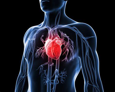 Is Jantung cara ini dipercaya mencegah penyakit jantung