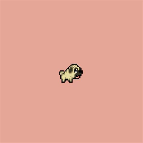 pug running gif pug running gif by skab find on giphy