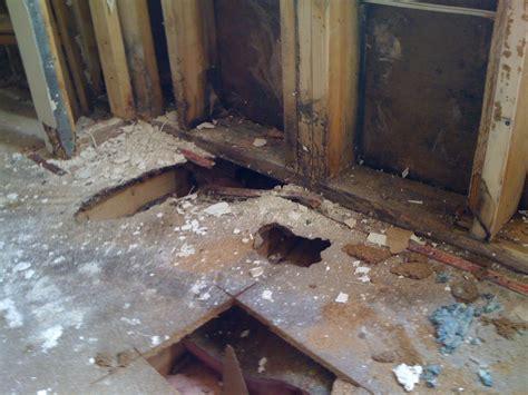 Water Repair Team Water Damage Flood Restoration Repair Cleanup