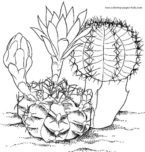 coloring pages of mexican flowers download