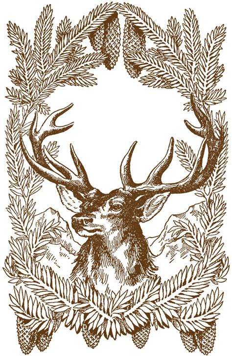 printable christmas illustrations free vintage christmas pictures deer the graphics fairy