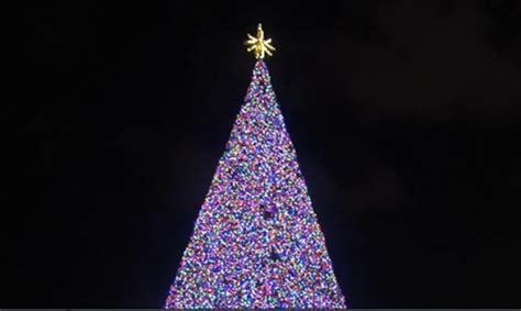 delray beach tree lighting 2017 delray beach christmas tree glowing for the holiday wptv com
