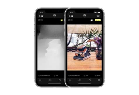 halide update granting iphone xr portrait mode submitted to app store