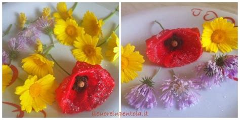 ricette con fiori commestibili fiori cristallizzati ricette di cucina il cuore in pentola