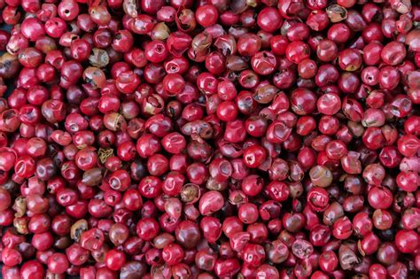 Coffee Salt by Free Photo Pink Pepper Spice Kitchen Red Free Image