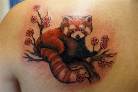 red panda tattoo tumblr 159 best images about tree tattoos on pinterest trees