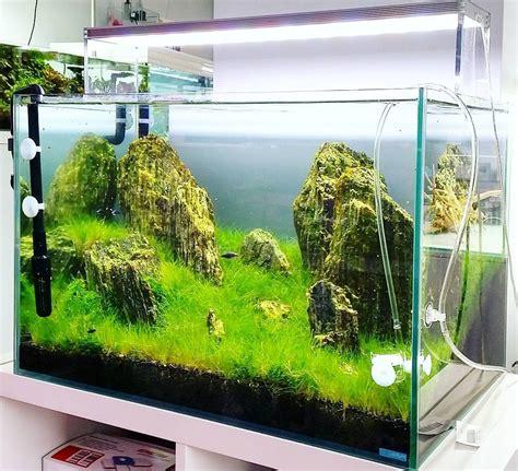 Harga Aquarium Untuk Ikan 26 model aquarium ikan hias minimalis terbaru 2018 dekor rumah
