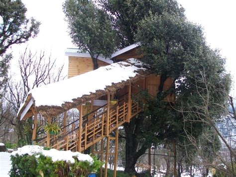 Tree Cottage Manali by 5 Awesome Tree Houses In India To Visit During The Monsoon