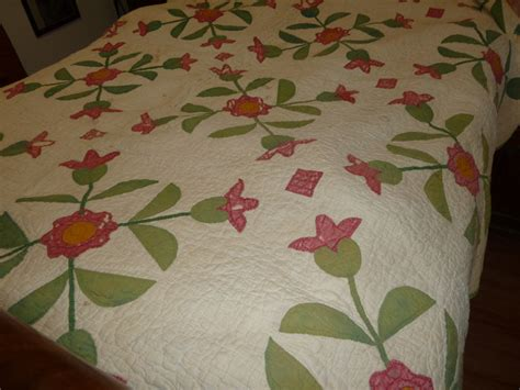 quilt pattern rose of sharon rose of sharon quilt 187 irish rose creations