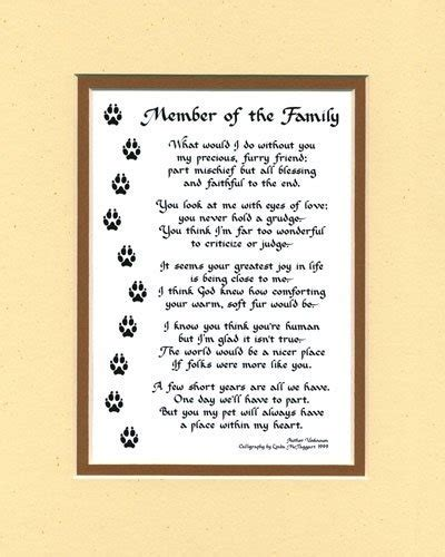 poems about dogs 17 best ideas about cat poems on rainbow bridge pet loss and cat memorial