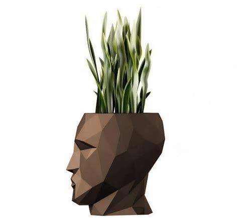 piante in vaso da interno fioriera adan per interno ed esterno un vaso per piante e