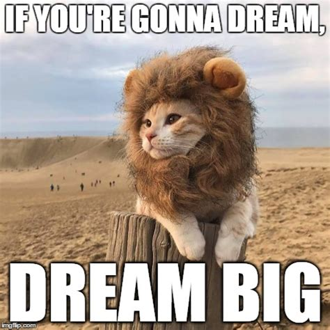 Dream On Meme - catlion imgflip