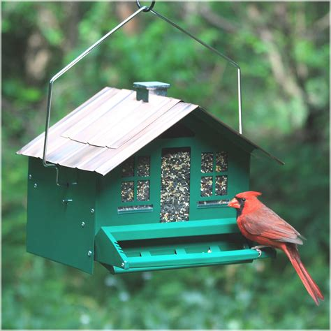 wild bird feeders for sale bird cages