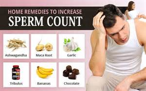 expert with us 10 foods that increase boost sp 233 rm